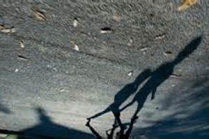 La Sombra de la Vida