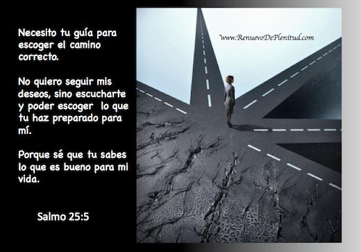 Estudios bíblicos   Una perspectiva cristiana de las cosas