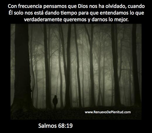 promesa-solos43