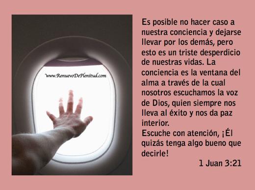 promesa-ventana8
