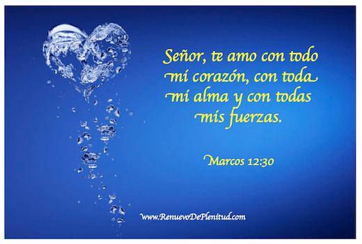 amor3298