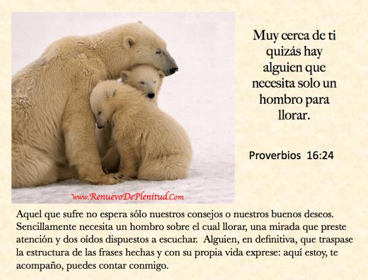 promesa-hombro09
