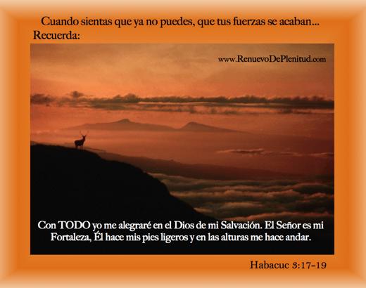 promesa-ciervos24