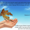 promesa-soltar01d