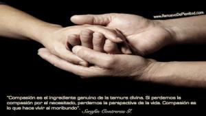 Compasión Es Vida Pensamiento-compasion6-300x169