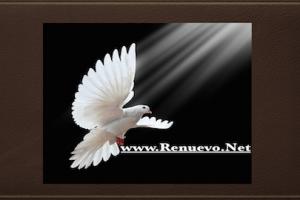 Efectos Del Pentecostés.