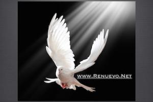 Efectos Del Pentecóstes. Parte 2